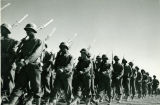 African American Soldiers Marching at Fort Huachuca, Arizona