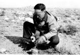 H. H. Nininger in the field, original collector of the Meteor Crater materials