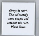 Mark Twain quotation pin