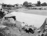 Photograph of a flood of the Little Colroado River in Holbrook (Ariz.)