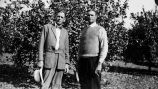 Photograph of Alex Compton and F.E. Chapman in a California citrus grove.