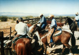 Photograph of cowboys working on the Santa Rita Ranch in southern Arizona
