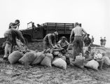 Photograph of Air Force personnel preparing sandbags to control flooding near Luke Air Force Base...