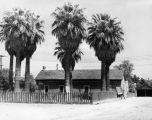 Photograph of the home of Arizona Governor Sidney Osborn in Phoenix (Ariz.)