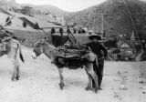 Photograph of a miner with a mule in Bisbee (Ariz.)