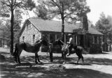 Photograph of horses at Whispering Pine Ranch in Alpine (Ariz.)