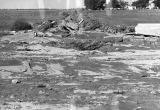 Photograph of flood damage on the Charles Wright farm near Eloy (Ariz.)