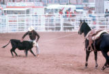 Photograph of a rodeo at the Arizona State Fair in Phoenix (Ariz.)