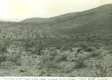 Photograph of Kaiser Springs at  Burro Creek Canyon (Ariz.).