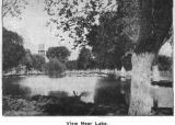 Photograph of a pond at  the Insane Asylum, now Arizona State Hospital in Phoenix (Ariz.).