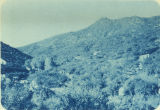 Photograph/cyanotype of the mountains in the Cedar Mining District, Mohave County (Ariz.).