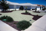 Photograph of landscaping at a home in Sun City (Ariz.).