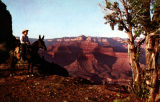 Photograph/color postcard of a man on a mule looking at O'Neil Butte in the Grand Canyon (Ariz.)