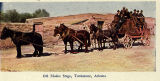 Photograph/colorized postcard of the Modoc Stage coach in Tombstone (Ariz.).