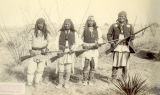 Photograph of the Apache Indians assembled during the Indian wars in southeastern Arizona
