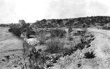 Photograph of a river, probably the Hassayampa River, on the Phoenix-Wickenburg Highway near...