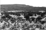 Photograph of the Big Sandy Wash near Wikieup (Ariz.)
