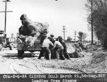 Photograph of Civil Works Administration workers removing tree stumps during road construction...