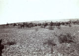 Photograph of cowboys working at an Arizona cattle ranch