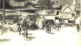 Photograph of mules hauling freight up the streets in Bisbee (Ariz.)