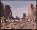 On the Navajo Indian Reservation, Northern Arizona. A flock of Navajo sheep watched by a young...