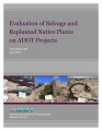 Evaluation of salvage and replanted native plants on ADOT projects