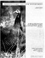Habitat selection and use by Merriam's turkey in northcentral Arizona : a final report
